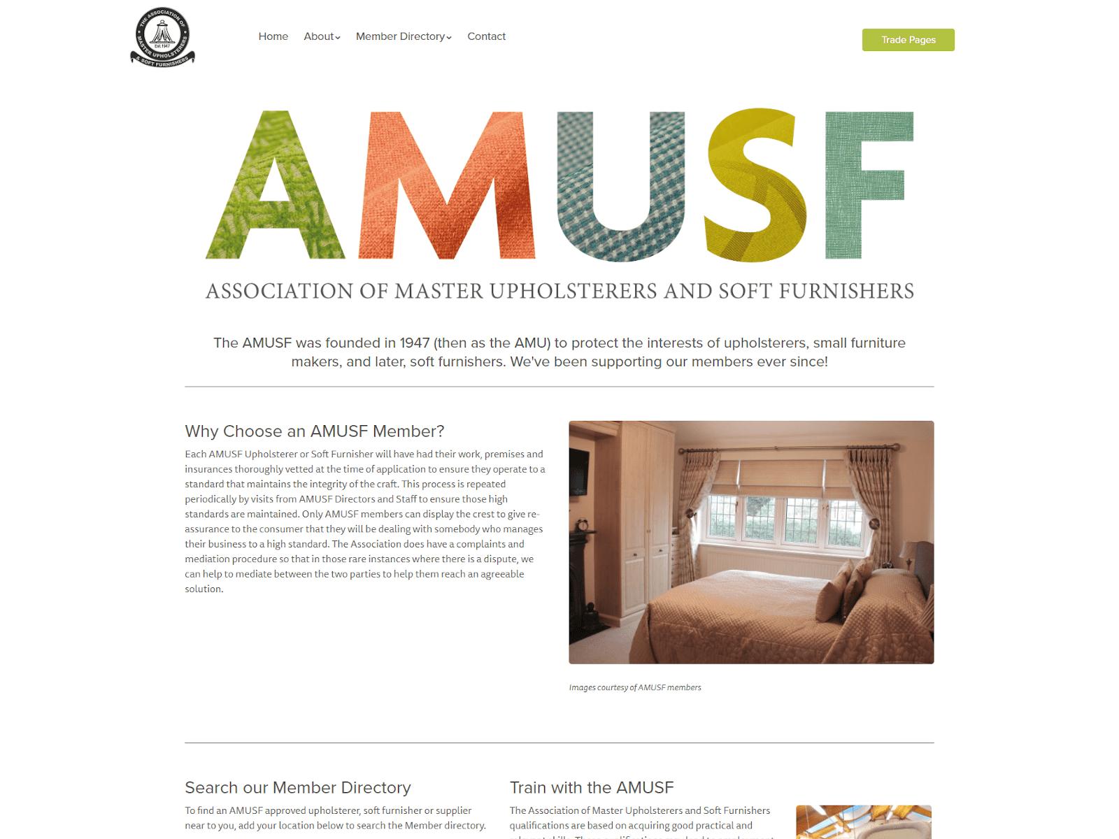 Screenshot of AMUSF website